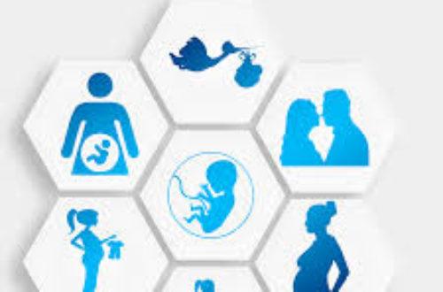 Article : Récit de votre grossesse… en avion ! Vol « grossesse future maman», l'intégrale